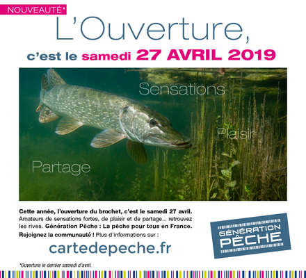 Ouverture carnassiers 2019